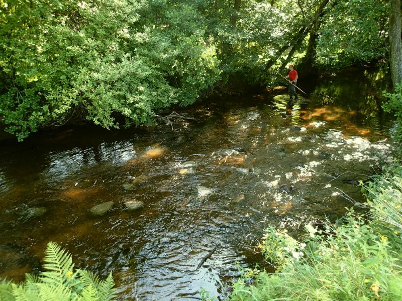 Samma sträcka efter åtgärd. Stenar som rensats har återfått sin plats i ån.