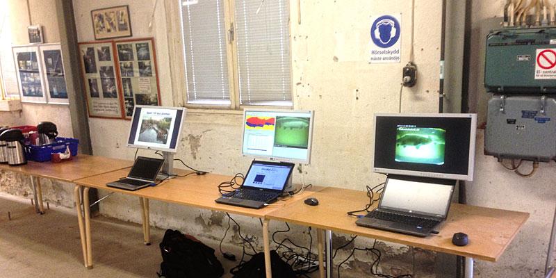På flera skärmar visades bl.a. projektets bakgrund och hur datan från fiskräknarna kan användas